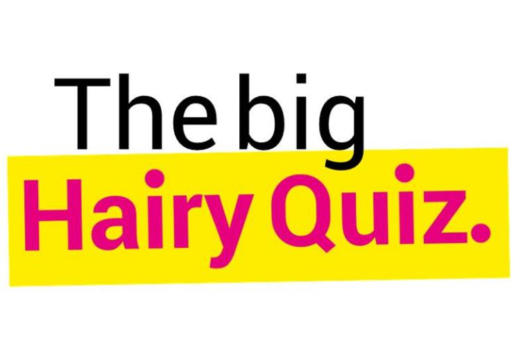Big Hairy Quiz